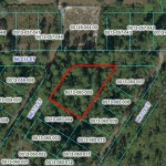 Fort McCoy Florida LOT For Sale