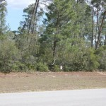 Ocala Marion County Land VIEW of LOT