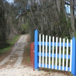 Ocala Land For Sale Front Gate/Road