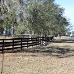 Ocala Village of Hidden Lakes LOT-Front Road View