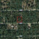 Hog Valley Land For Sale Fort McCoy, Fl