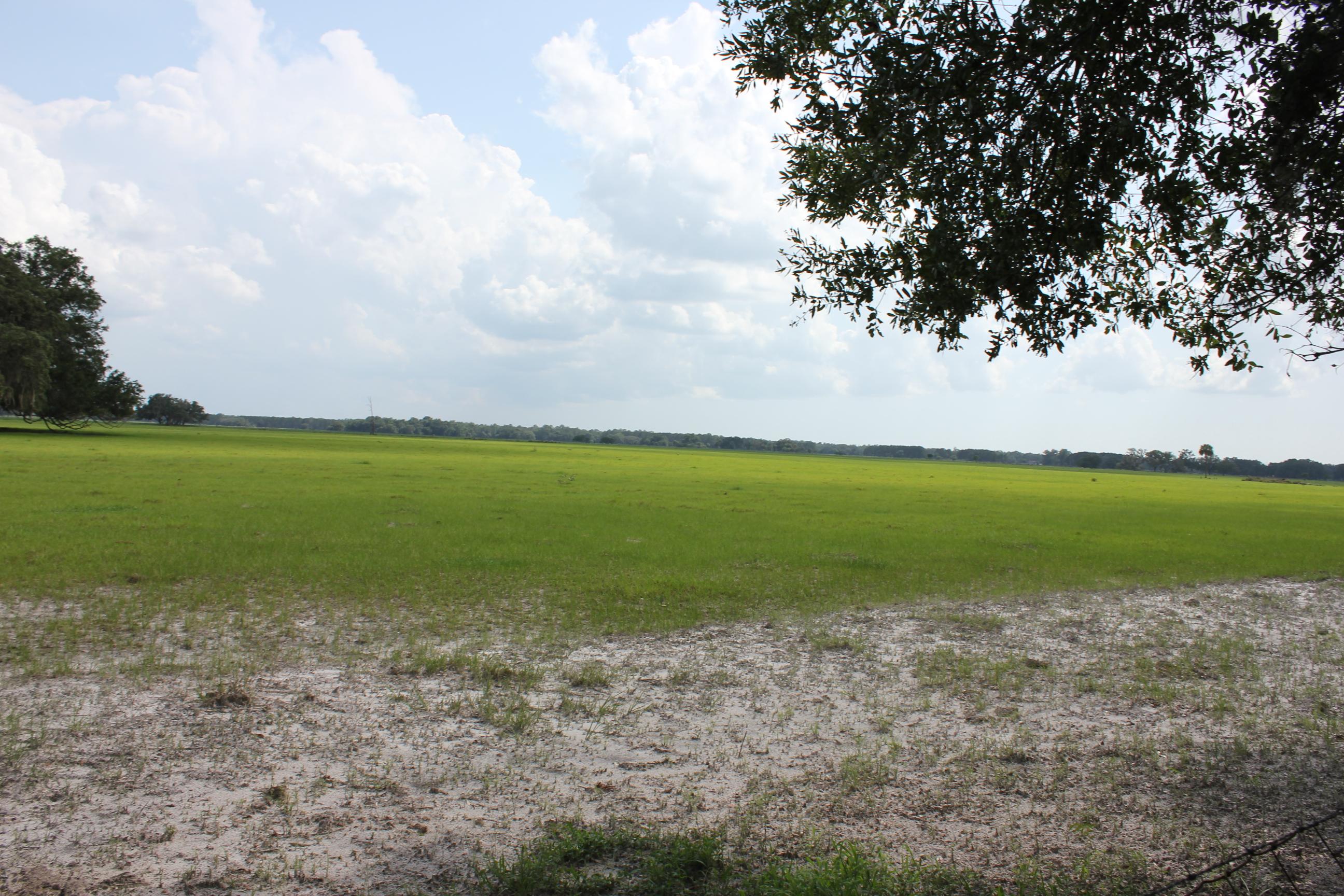 florida highlands dunnellon fl land for sale