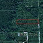 8 Acres Ft. McCoy, Florida Land For Sale