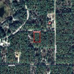 R1741-003-005 Overview Lake Tropicana Dunnellon, Florida1