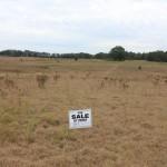 3.0 Acres in Dunnellon, Florida Romeo Farms
