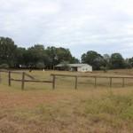 3.0 Acres in Romeo Farms Dunnellon, Florida