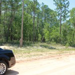Side of LOT View: 1.98 Acres in Hawthorne, Fl