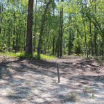 Trail on property: 1.98 Acres