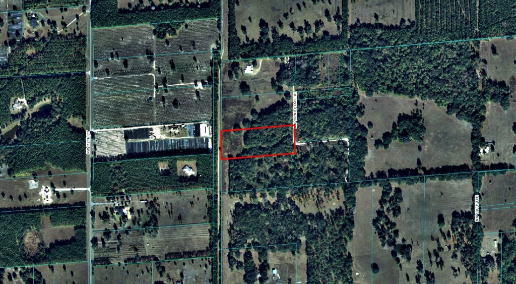 5.84 Acres Reddick, Florida