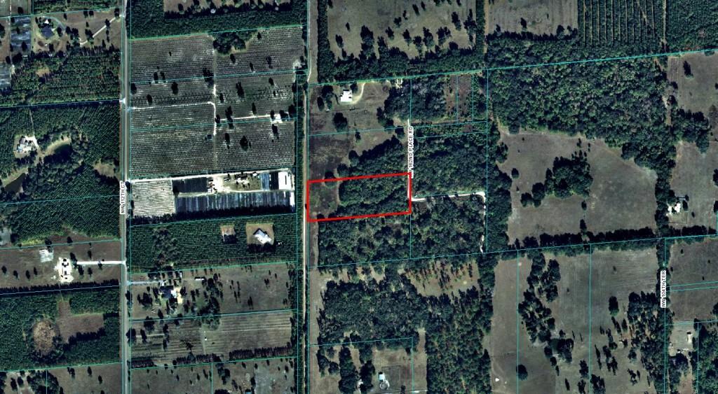 5.84 Acres Reddick, Florida