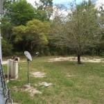 Back Yard 1.25 acres