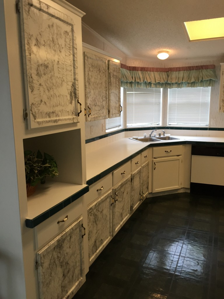Kitchen, Many Cabinets/Storage