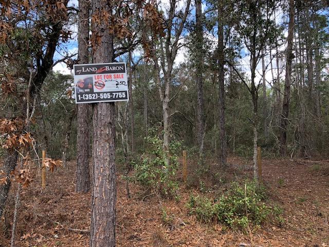 2.5 Florida Highlands SW 157th Ln2