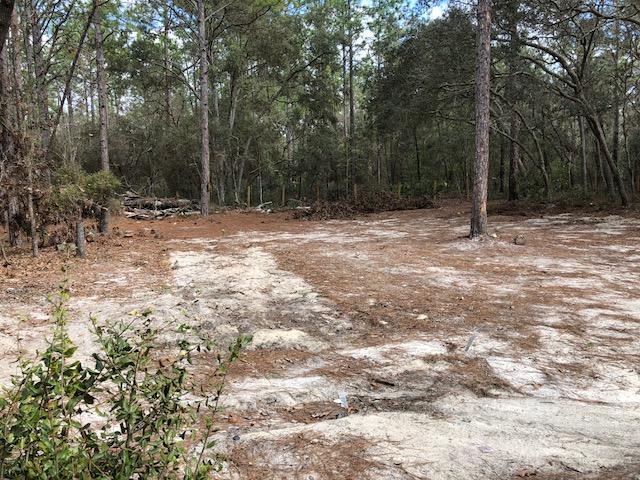2.5 Florida Highlands SW 157th Ln5