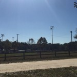 Dunnellon Recreational Fields