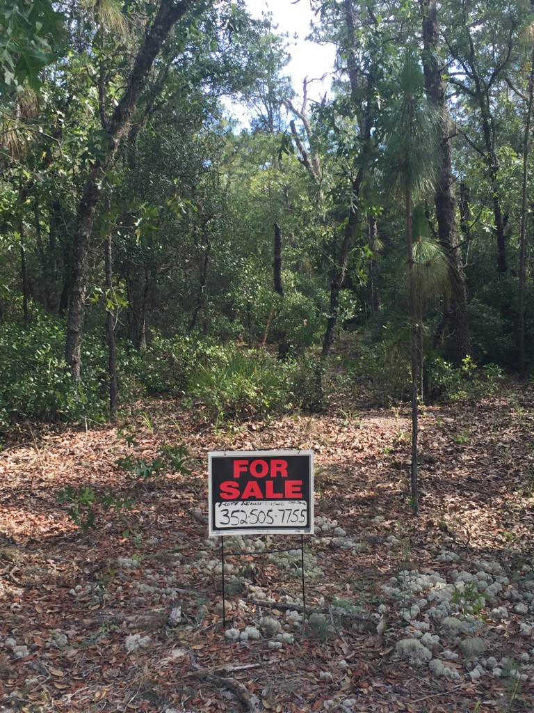 1.25 Acres in Florida Highlands Dunnellon, Fl