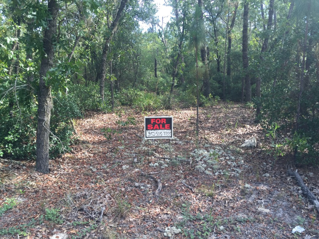 1.25 Acres in Florida Highlands