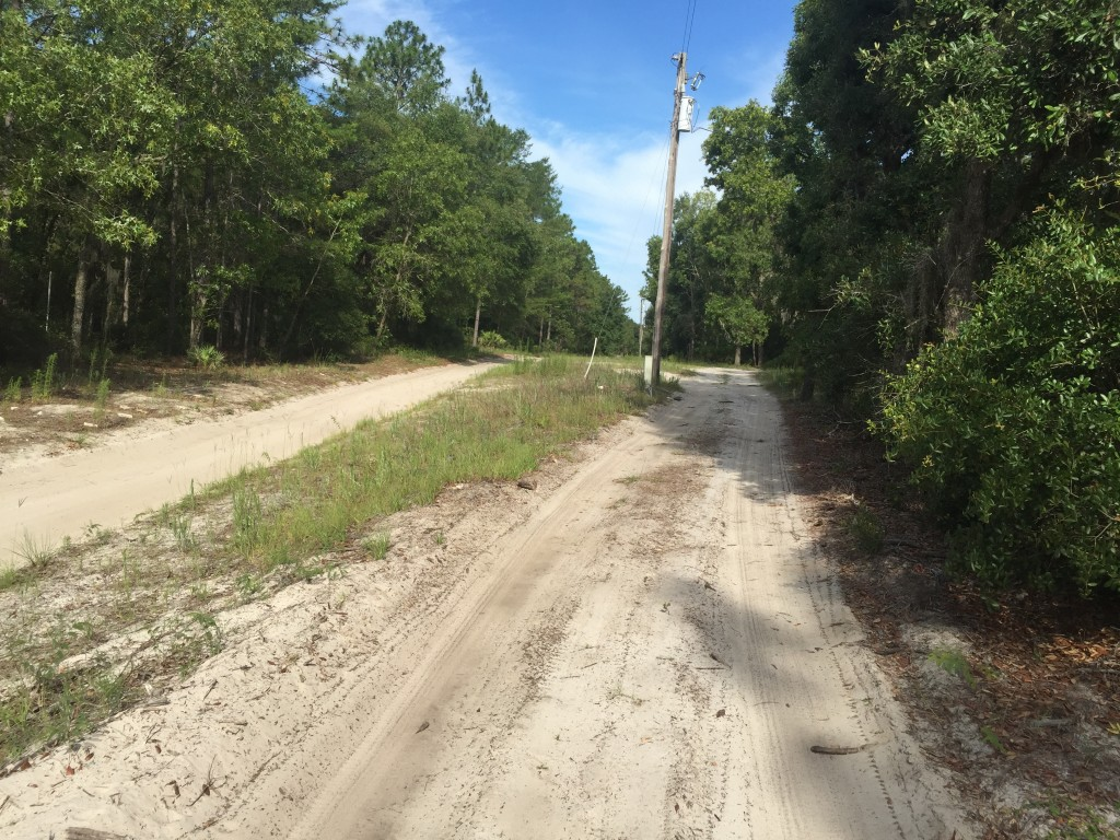 1.25 Acres in Florida Highlands 157th Road