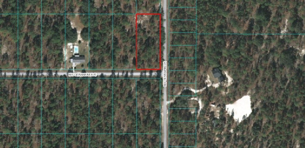 Aerial Lot Lines. Rainbow Lakes Estates