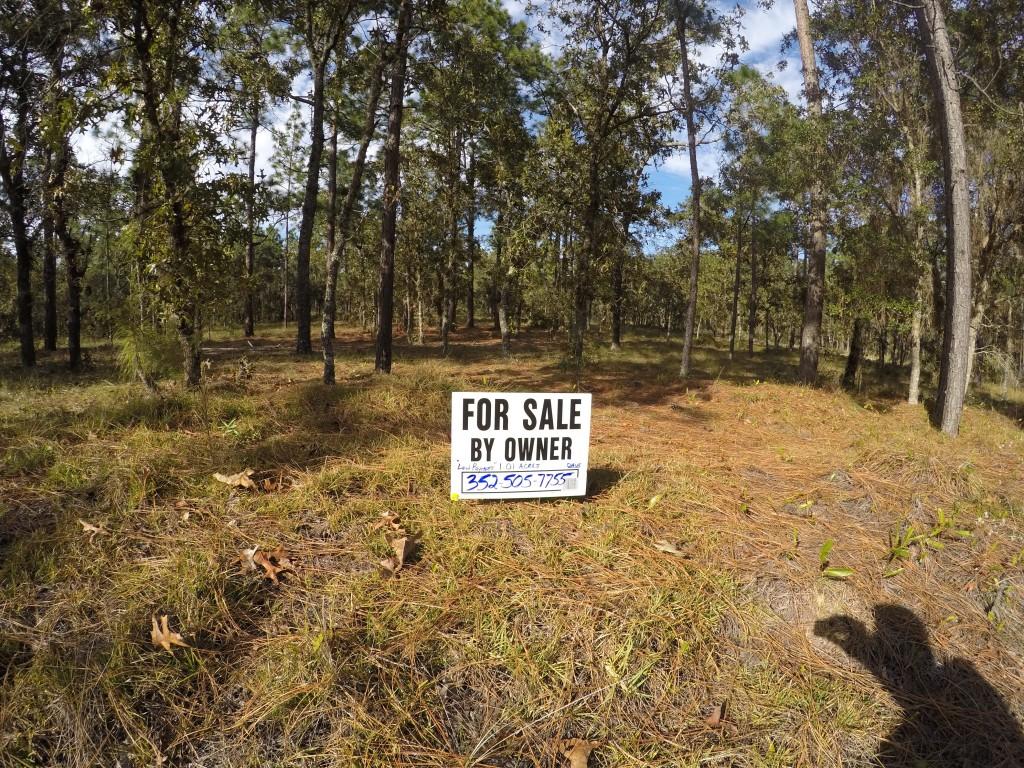 1.01 Acres Rainbow Lakes Estates