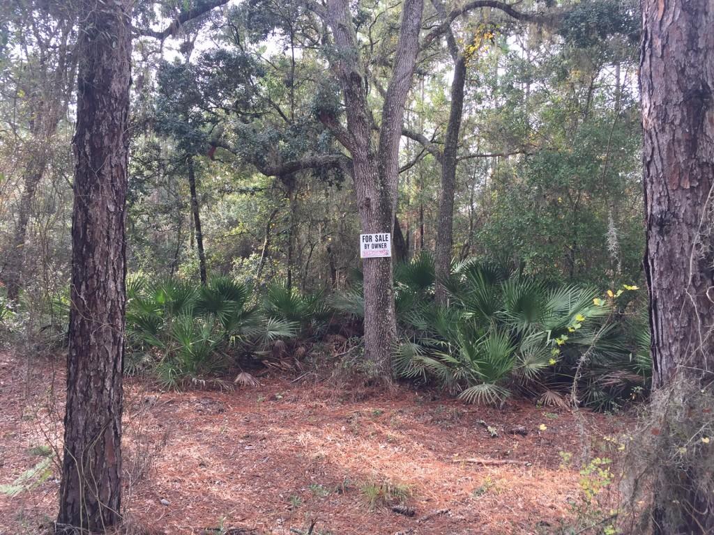 i2-5-acres-florida-highlands-sign
