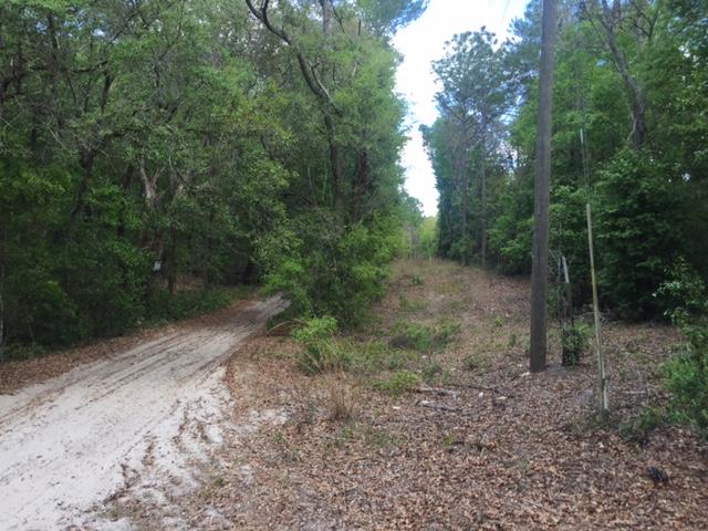 1.25 Acres SW 158th LN1