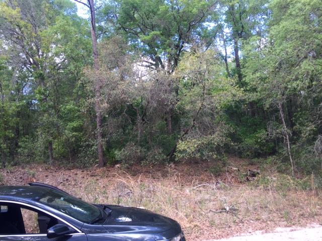 1.25 Acres SW 158th LN2