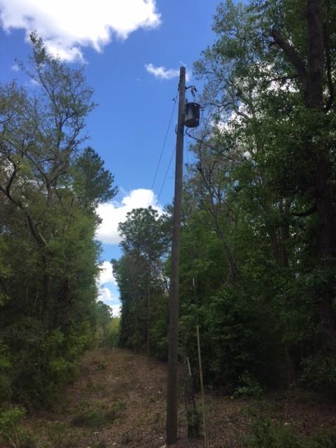 1.25 SW 158th LN Power Pole