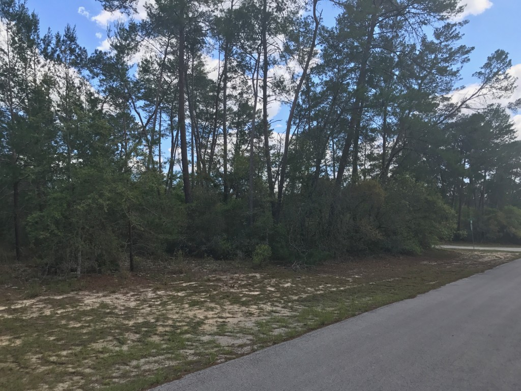 Marion Oaks .29 Lot frontage