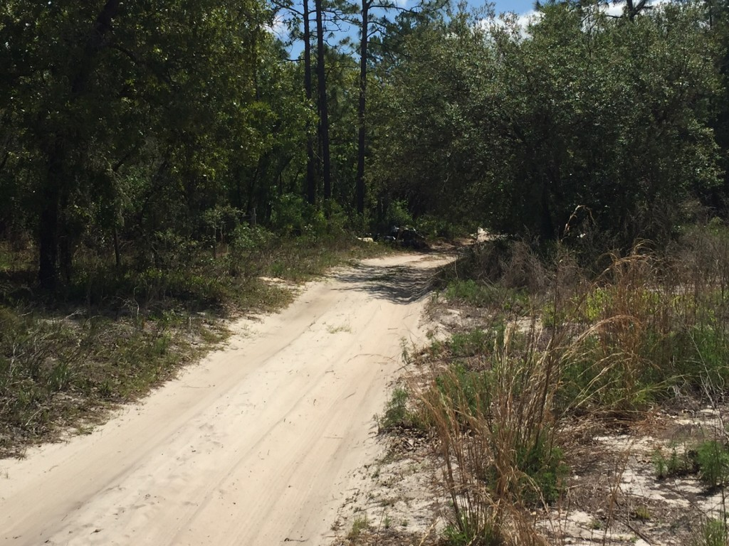 3.75 acres in Florida Highlands