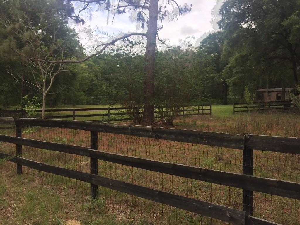 Ocala Farm Fence Paddock
