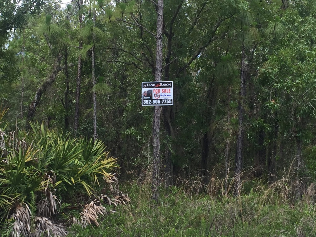 Bverly Hills Florida