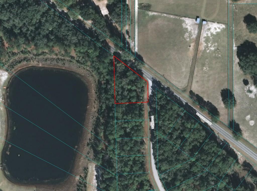 Ocklawaha Lake Property