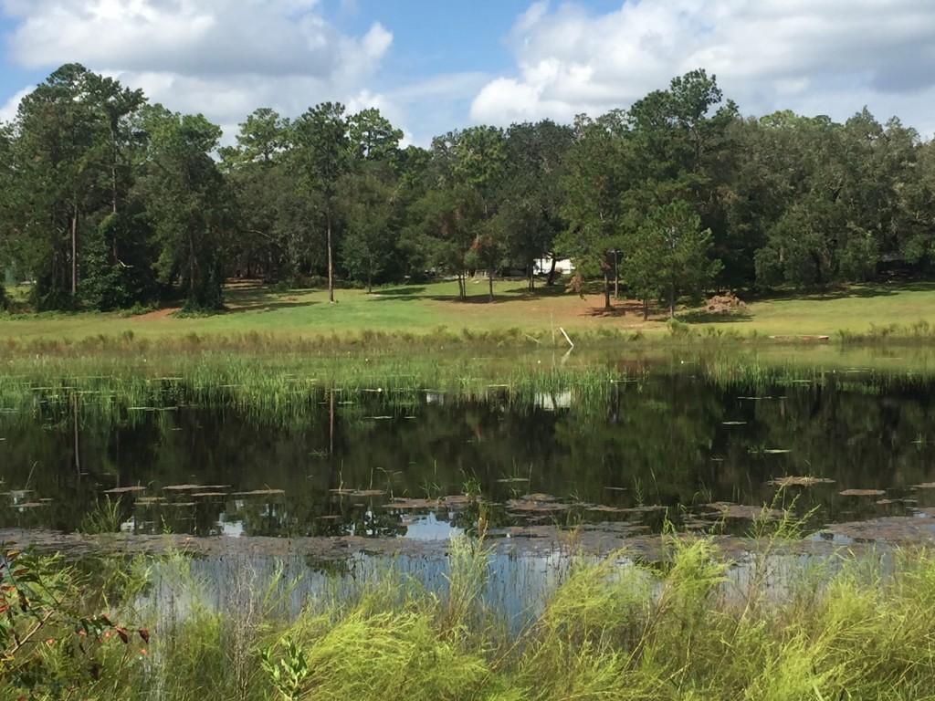 wood & Lakes Water Views